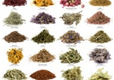 ToolBox Video: How To Stock Your Kitchen with Basic Herbs & Spices